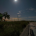 The Moonit Path To Fort Myers Beach Fort Myers Florida by Toby McGuire