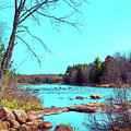 The Moose River At Lyonsdale by David Patterson