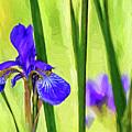 The Mystery Of Spring - Paint by Steve Harrington