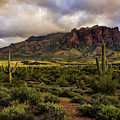 The Mystical Beauty Of The Superstitions  by Saija Lehtonen