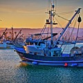 The Natalie Rose Returns, Ventura Harbor, California by Flying Z Photography by Zayne Diamond