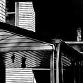 The Neighborhood by Michael Nowotny
