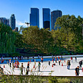 The New York Central Park Ice Rink  by Chris Lord
