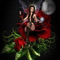 The Night Fairy 2 by Ali Oppy