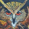 The Night Owl  by Sushma Bengani