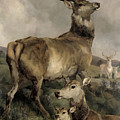 The Noble Beast by Sir Edwin Landseer