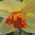 The Nodding Daffodil by Lea Novak