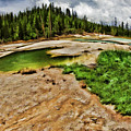 The Norris Geyser Basin Yellowstone by Blake Richards