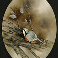 The Nuthatch by Betty Stevens