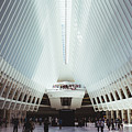 The Oculus by Liam Nielsenshultz