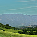 The Ojai Valley by Diana Hatcher