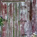 The Old Barn Door by Terri Morris
