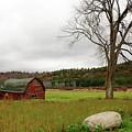 The Old Barn With Tree by Nancy De Flon