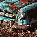 The Old Blue Car by Bonnie Rovere