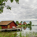 The Old Boat-house by Torbjorn Swenelius