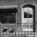 The Old Book Store by Jeff Klingler