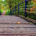 the old bridge over the river invites for a leisurely stroll in the autumn Park by George Westermak