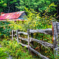 The Old Fence by Debra and Dave Vanderlaan