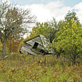 The Old Homestead And Orchard by Michael Peychich