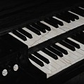 The Old Organ by Jenny Revitz Soper