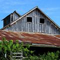 The Old Rusty Barn by Terri Morris