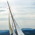 The Old Sailing Yacht At Competitions In The Gulf Of Saint Trope by Sergey Pro