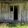 The Old Shed by Katie Beougher
