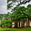 The Old Sheldon Church Ruins by Lisa Wooten