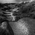 The Old Stone Track Monochrome Landscape by Elizabetha Fox