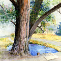 The Old Tree by Arline Wagner