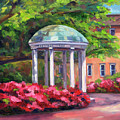 The Old Well Unc by Jeff Pittman