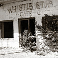 The Old Whistle Stop Cafe by Marilyn Hunt