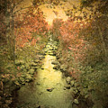 The Onset Of Autumn by Tara Turner