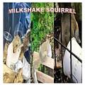 The Original Official Milkshake Squirrel by Ronald Savage