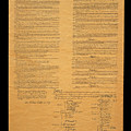 The Original United States Constitution by Panoramic Images