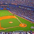 The Original Yankee Stadium by Ronald Fleischer