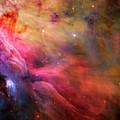 The Orion Nebula Close Up I by Ricky Barnard