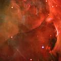 The Orion Nebula Close Up Iv by Ricky Barnard