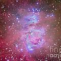 The Orion Nebula Region by Alan Dyer