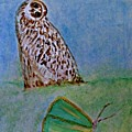 The Owl And The Butterfly by Michela Akers