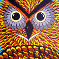 The Owl Stare by Nick Reaves