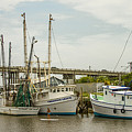 The Paddler Tybee Island Shrimp Boats by Reid Callaway