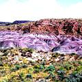 The Painted Desert  In Arizona by Merton Allen