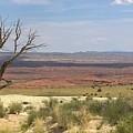 The Painted Desert Of Utah 1 by Jennifer E Doll