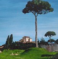 The Palatine Hill, Rome by Tony Gunning