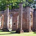 The Palmetto Phoenix Old Sheldon Church Ruins by Elena Tudor