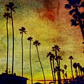 The Palms by Kevin Moore