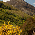 The Pap Of Glencoe by Colette Panaioti