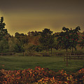 The Park At Dark by Howard Roberts