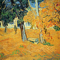 The Park At Saint Pauls Hospital Saint Remy by Vincent van Gogh